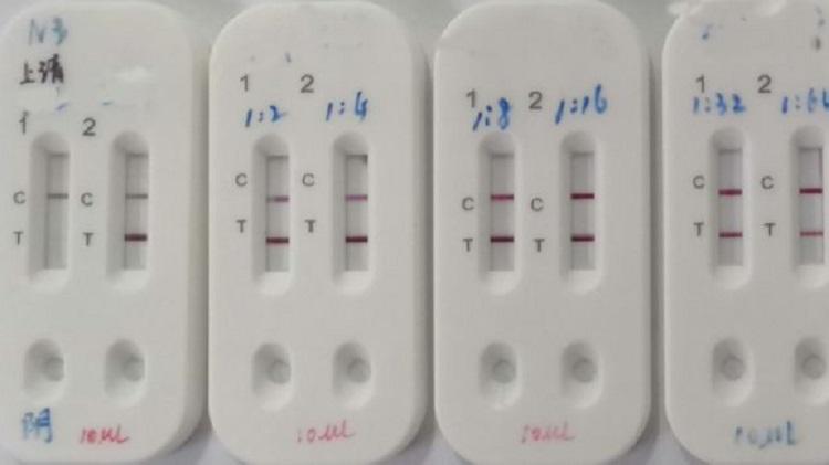 Хятадууд коронавирусийг цусаар оношлох оношлуур бүтээжээ