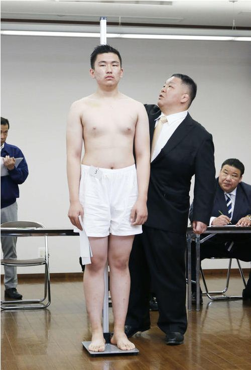 https://news.zindaa.mn/uploads/images/sumo.JPG